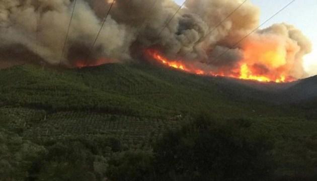 Большой лесной пожар в Италии
