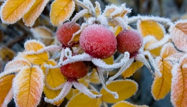 Prevén heladas de hasta 12 grados bajo cero ya en octubre