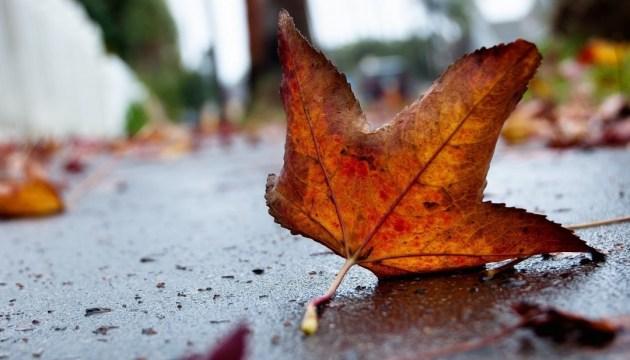 Понеділок в Україні буде сухим та прохолодним
