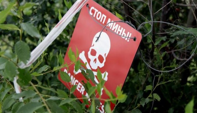 В оккупированной Горловке трое детей погибли, подорвавшись на мине - правозащитница