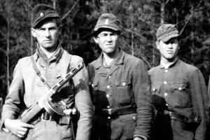 Інститут нацпам'яті зняв ролик до річниці найбільшої битви УПА
