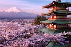 В Японии планируют стимулировать внутренний туризм деньгами
