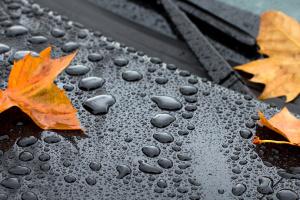 В Україну прийшла осіння негода - де завтра дощитиме найбільше