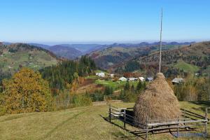 Poroschenko wirbt für Entwicklung des Tourismus in Karpaten