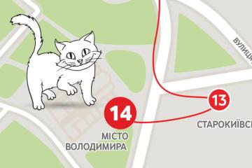 Les chats vont dévoiler les secrets de la descente Saint-André