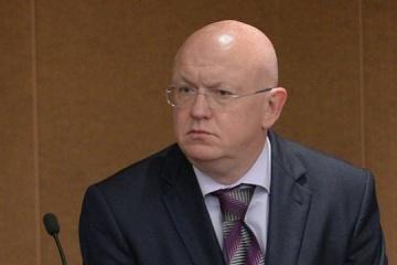 ロシア国連常駐代表、安保理にて、ウクライナ東部での「選挙」の実施の理由を説明