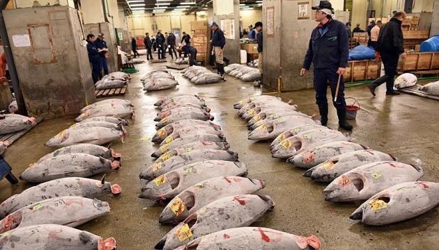Крупнейший в мире рыбный рынок переехал на новое место