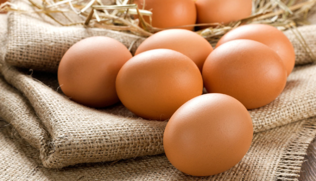 Egg production grows by 3.1% in Ukraine
