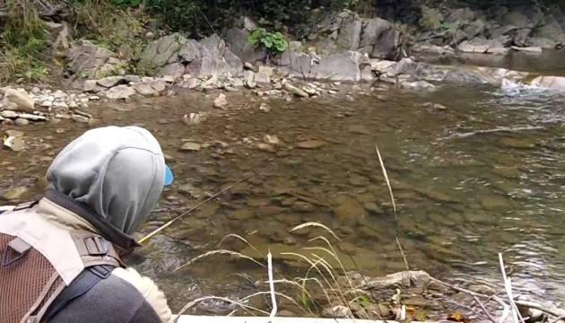 На Прикарпатье на два месяца запретили рыболовство