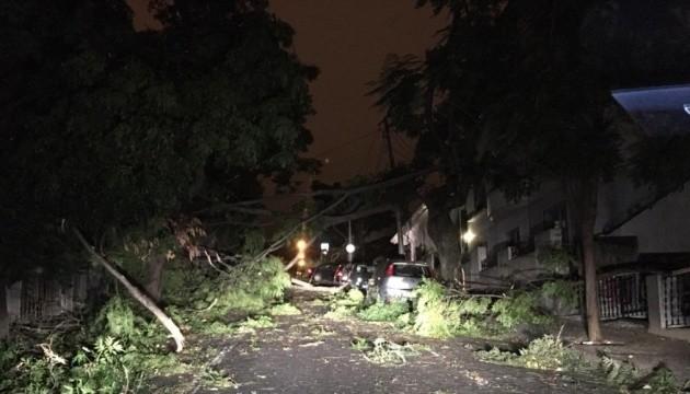 Вирвані дерева, пошкоджені авто та будинки: ураган