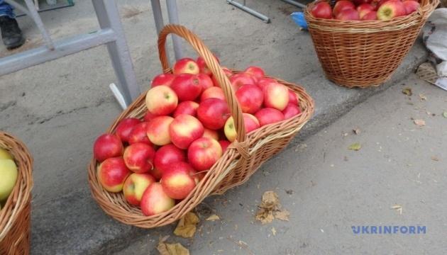 Барская ОТГ сделала своим брендом подольские яблоки