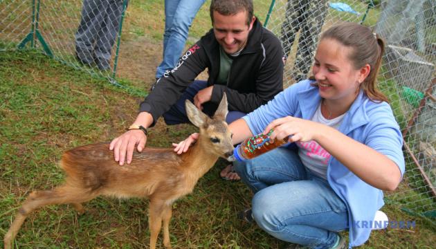 Центр реабілітації диких тварин не пускатиме туристів без екскурсовода