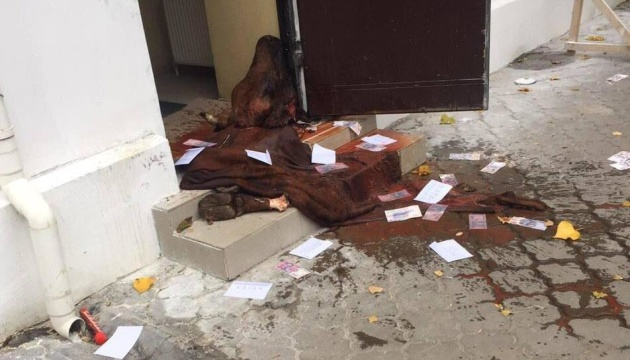 Под здание госветслужбы в Одессе принесли голову коровы