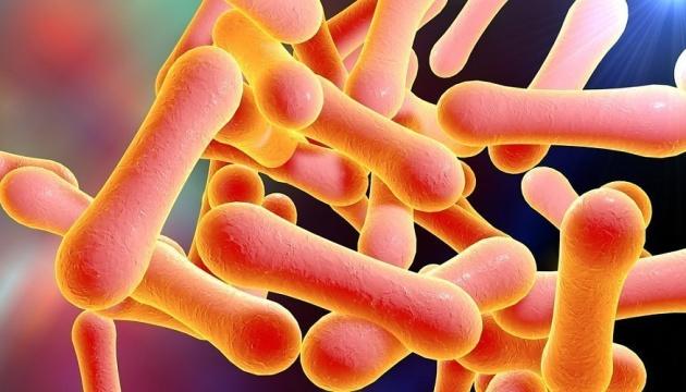 На Закарпатті вперше за 10 років виявили дифтерію