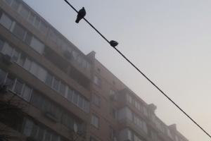 Загазованности воздуха в Киеве способствует теплая погода и слабый ветер