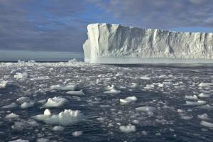 В Антарктиде может отколоться айсберг, как два Нью-Йорка – NASA