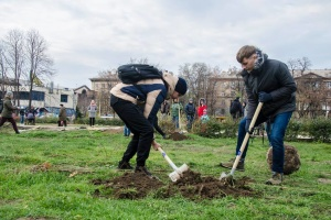 Івано-франківці зможуть посадити дерева на честь важливих подій у житті