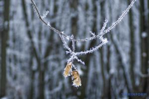Мороз и ветер: чего ждать украинцам в ближайшие дни