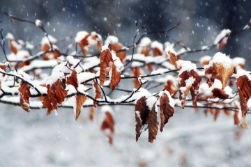 Ukrainians warned of blizzard and strong winds