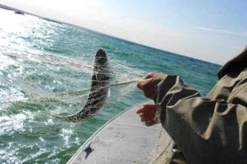 In der Ukraine Fischfang um 16,6 Prozent zurückgegangen