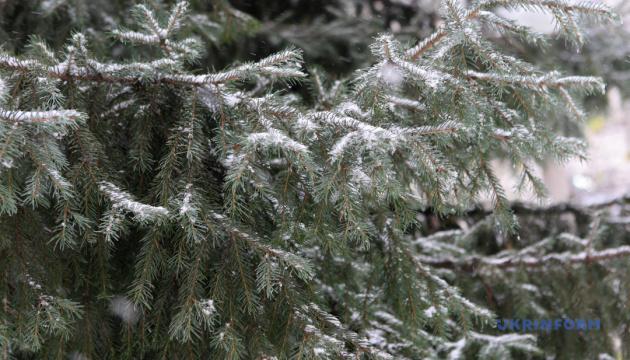 Зима зустріне українців морозом до -11° і снігом
