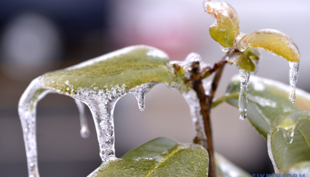 Дождь с мокрым снегом и ночные морозы, по всей Украине - гололедица