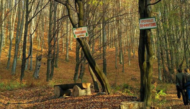 Закарпаття відправить туристів на шлях українського Робіна Гуда
