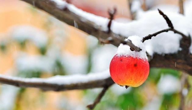3 декабря: народный календарь и астровестник
