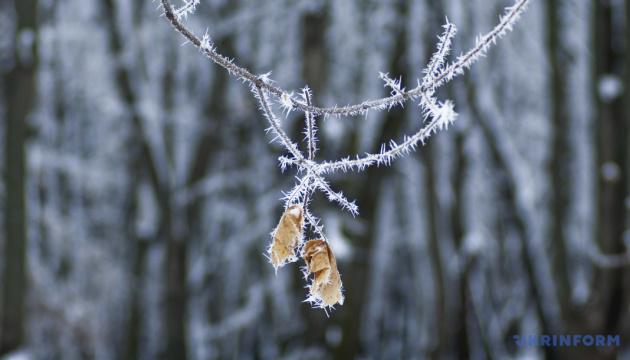 Синоптик рассказала, когда киевлян ожидает похолодание