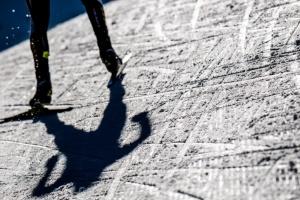Биатлон: в Австрии сегодня - женская эстафета и мужская гонка преследования