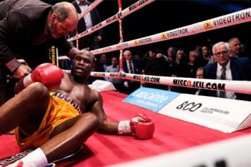 Gvozdyk knocks out Stevenson to claim WBC light heavyweight title