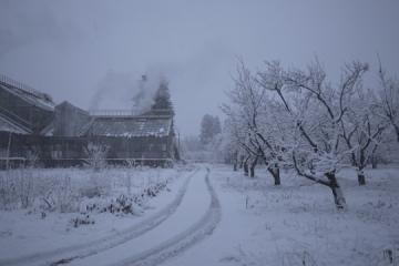 电影《冬日花园的历史》在乌克兰国家展览中心落幕