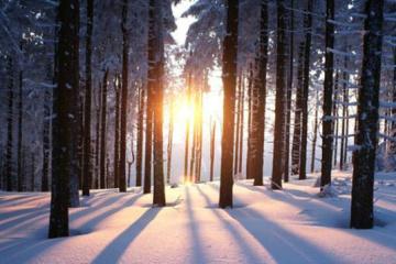 Hoy es el día del solsticio de invierno