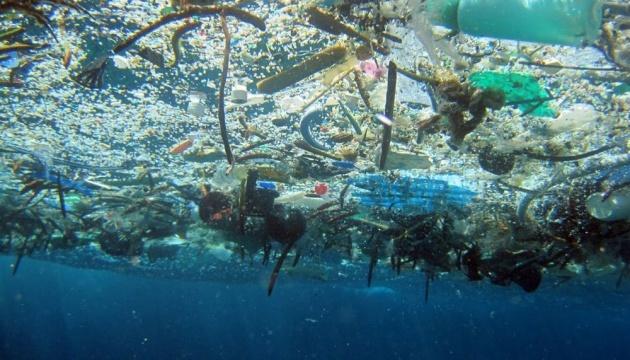 Пластика в океане к середине века будет больше, чем рыбы - ООН