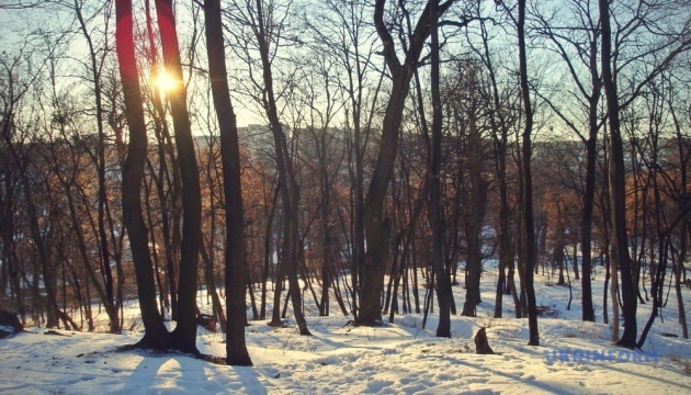 Погода на суботу: мокрий сніг і дощ, місцями ожеледиця