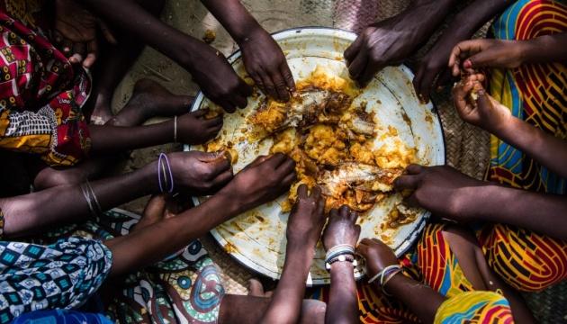Німеччина дасть €25 мільйонів одному з найбідніших африканських регіонів