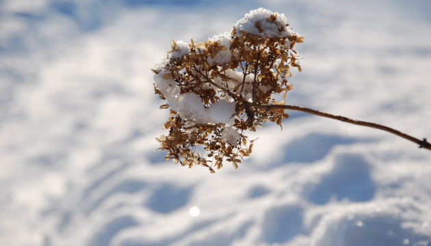 Новий рік Україна зустріне зі снігом, дощем і сонцем