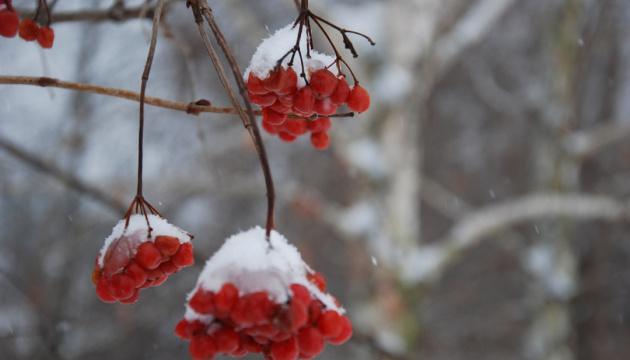 Тиждень розпочнеться зі снігу та морозів