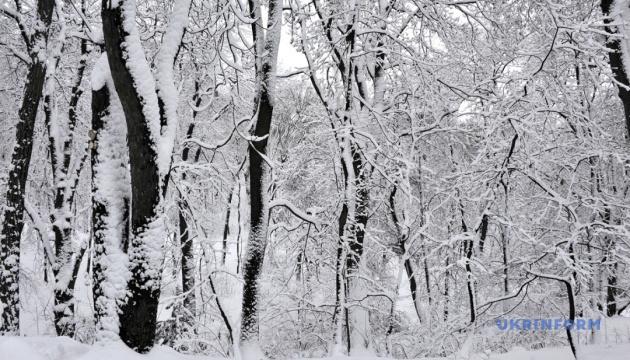 На Різдво обіцяють невеликий сніг і до 16º морозу