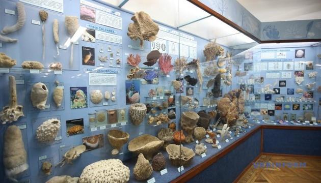 Музеї зберігають історичну пам'ять - МКІП привітало зі святом працівників галузі