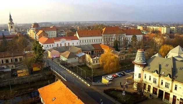 Украина и Венгрия могли бы совместно развивать больницу и школу в Берегово - посол