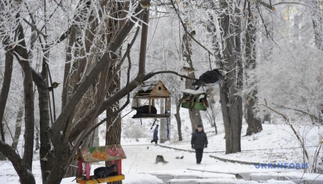 Українцям обіцяють сніг, ожеледицю та подекуди -10 морозу