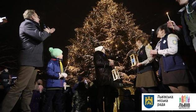 リヴィウ市のクリスマス・ツリーの照明が点灯