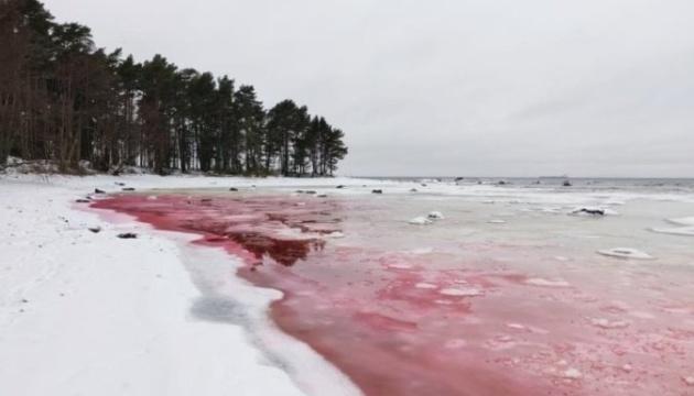 Вода на пляжі в Естонії стала криваво-червоною