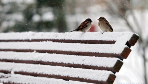 Українцям обіцяють сніг, дощ та ожеледицю