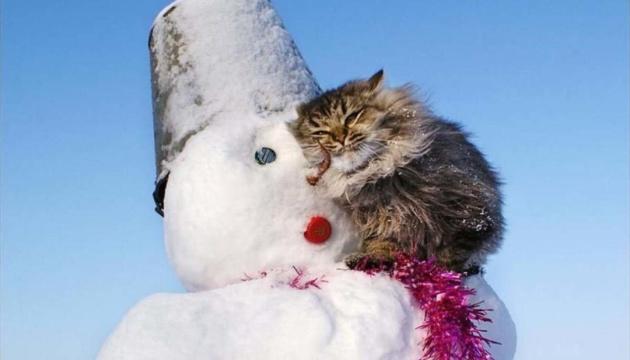 L'hiver fait rage : le temps se dégrade dans huit régions de l'Ukraine