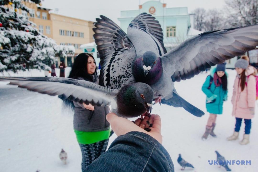 Фото: Сергій Гудак