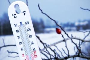 Самой холодной столицей мира на Крещение стала Оттава