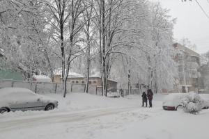 Черновцы остались без соли и песка во время снегопада