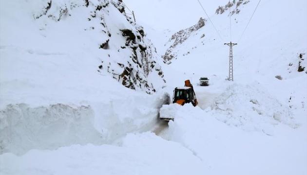 Снегопады и лавины заблокировали доступ к нескольким селам на севере Турции